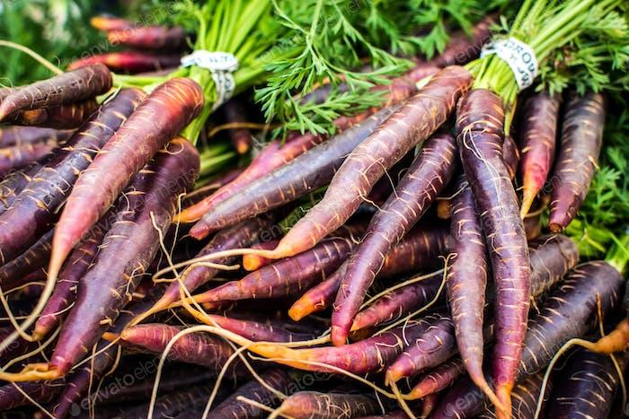 Bio lila Karotten auf einem lokalen Bauernmarkt