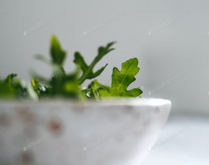 Arugula leaves in craft ceramic boul, copy space