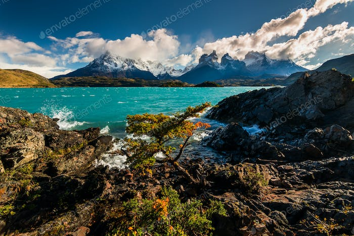 Majestic mountain landscape. National Park Torres del Paine, Chile