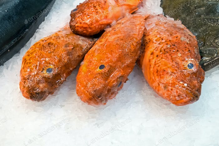 Red fish on ice at the Boqueria market