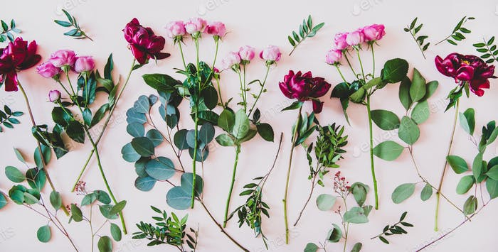 Flat-lay of purple peonies, pink roses and green branches