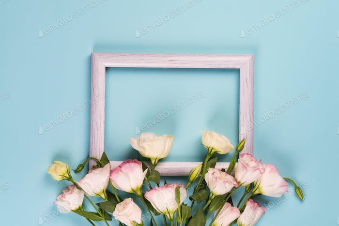 Empty gray frame and flowers eustoma on blue paper background with copy space. Flat lay. Love