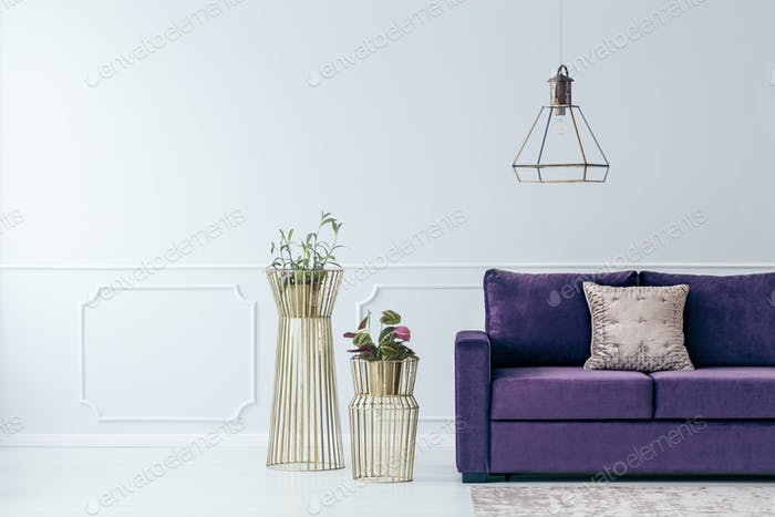 Violet elegant living room interior
