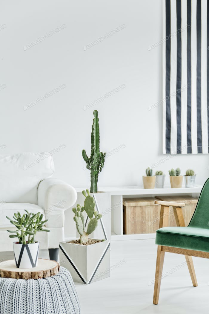 White room with green chair