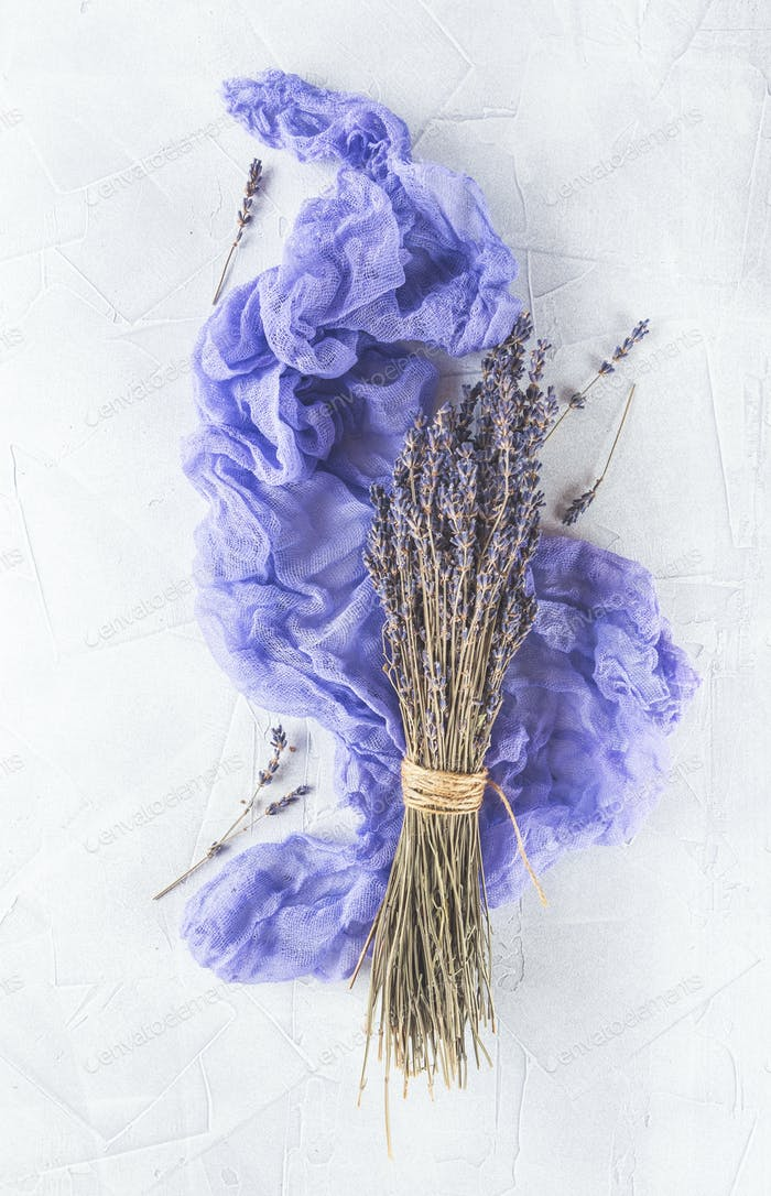 Dried lavender flowers on white background