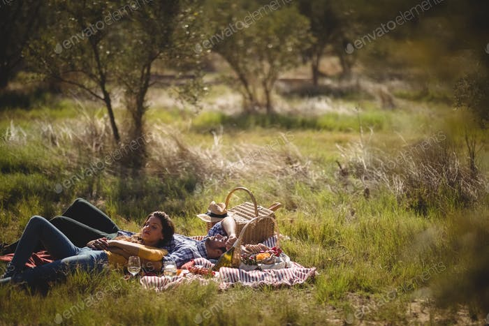 Young couple resting together on picnic blanket at olive farm