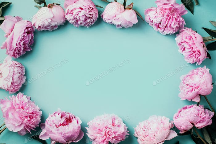 Frame wreath pattern of pink peonies on pastel blue background. Flat lay, top view. Floral