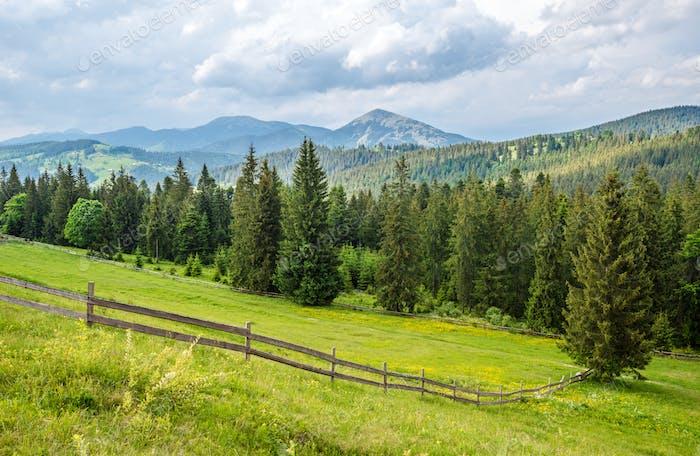 Wunderschöne malerische Landschaft von grünen Wiesen