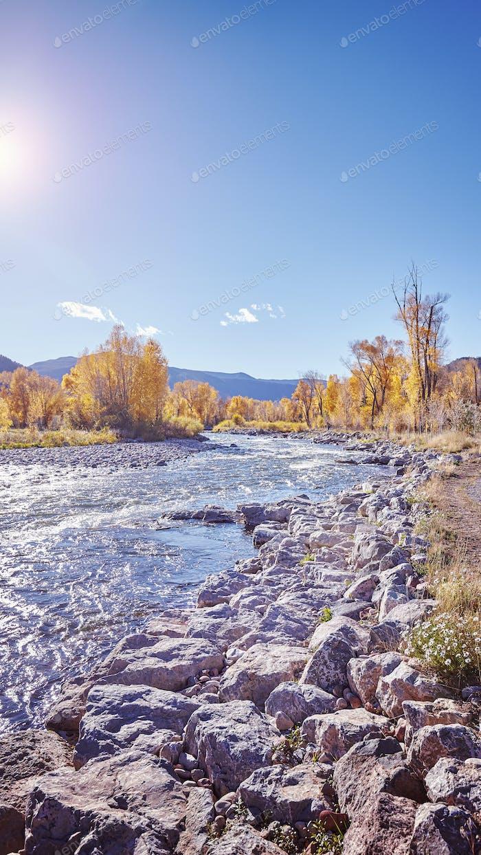 Color toned autumn landscape against the sun.