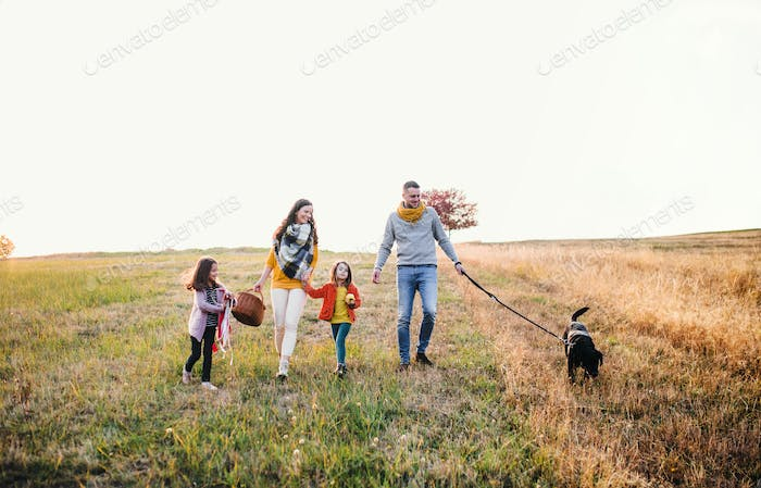 A young family with two small children and a dog on a walk in autumn nature