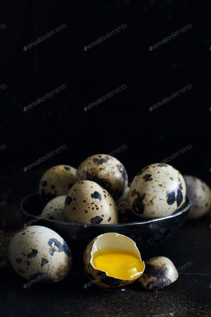 Quail eggs close up
