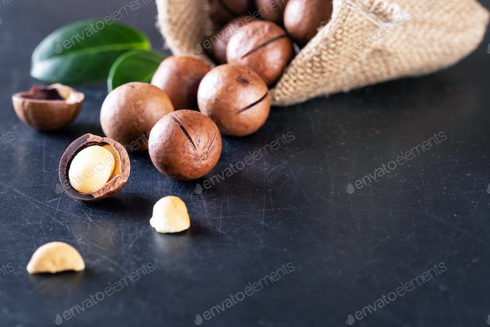 Australian macadamia nuts with green leaves spilled out of the bag against black background
