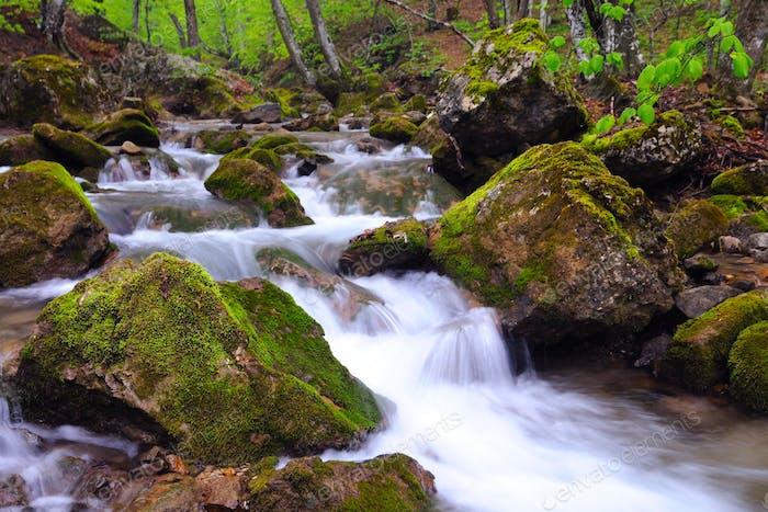 Stones lie in water in mountain stream