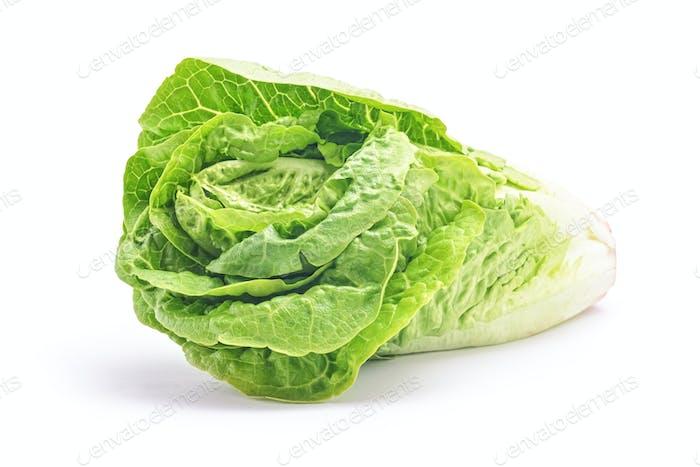 salad head