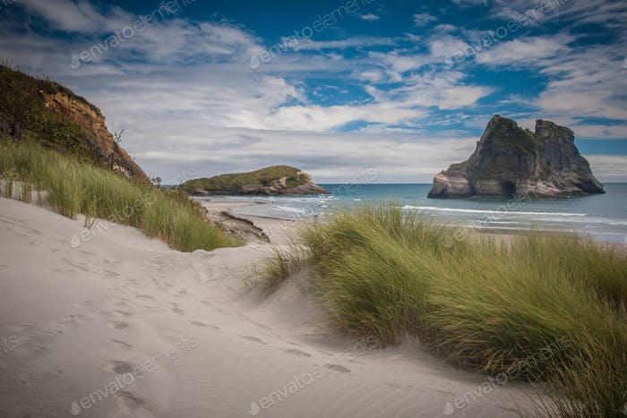 Inviting path Dune vegetation at Famous Wharariki Beach vintage
