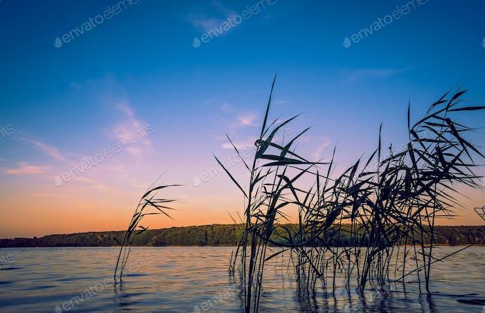 Amazing shot of a reflective lake on a beautiful sunset background