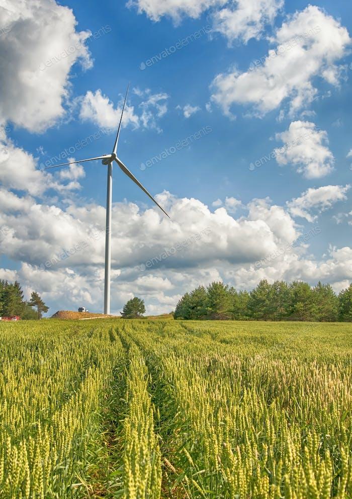 windmills in field