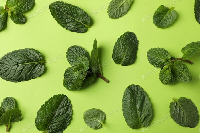 Fresh mint leaves on green background, top view