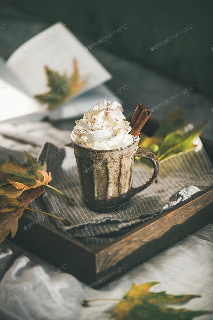 Autumn Hot chocolate with whipped cream and cinnamon in bed