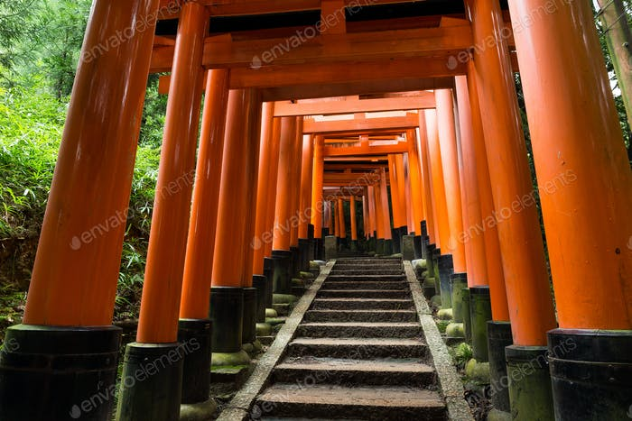 Fushimi Inari Shrine Torii temple in kyoto Japan