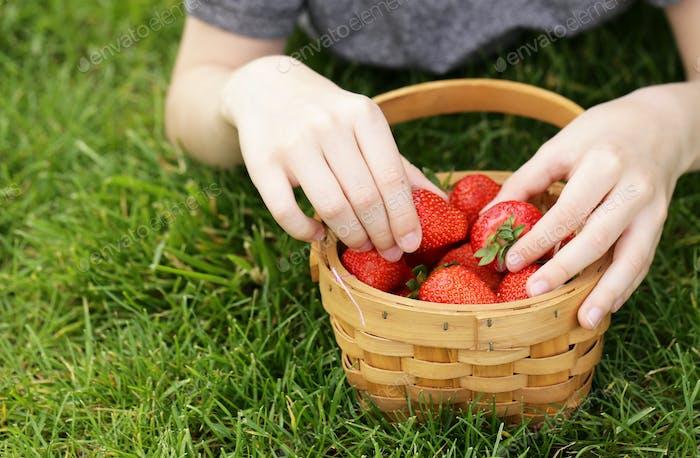 Boy with Organic Strawberry