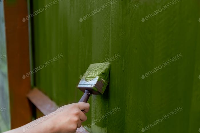 Painting old wooden fence with a green paint