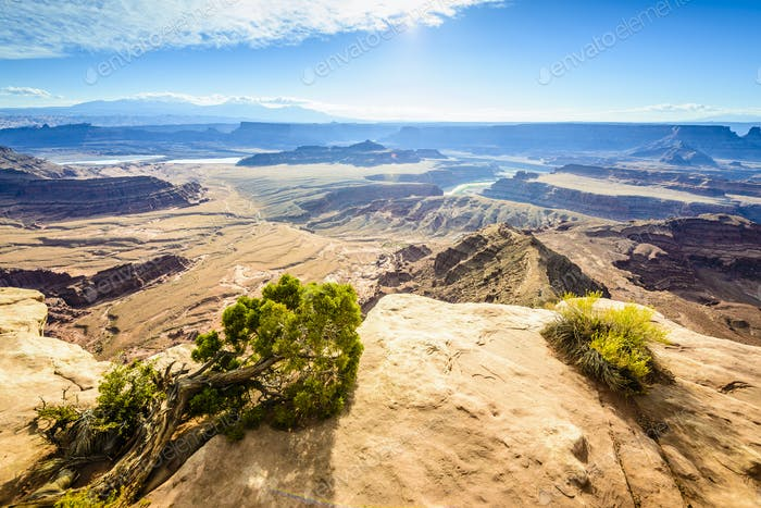 54929,Aerial view of Horseshoe Bend, Canyonlands, Utah, United States