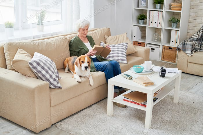 Serene granny relaxing with dog on sofa