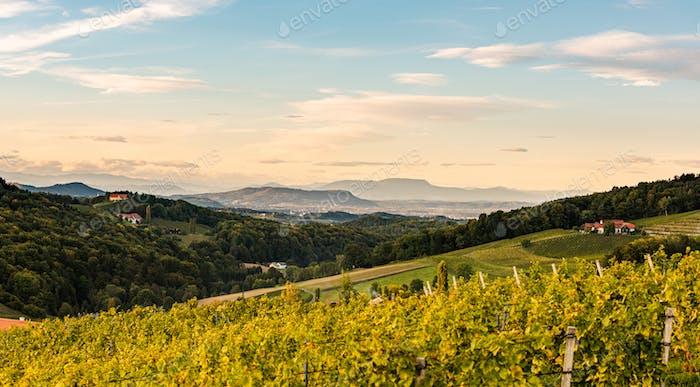Vista desde la famosa calle del vino del sur de Estiria. Ratsch, Austria turismo