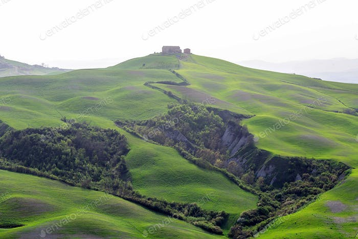 Green hills of Tuscany in spring