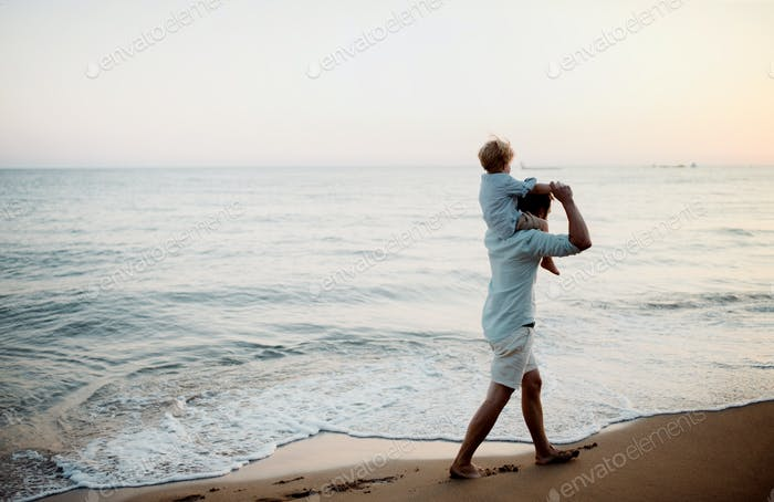Father with a toddler boy walking on beach on summer holiday, having fun.