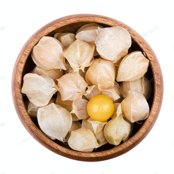 Physalis in a bowl over white