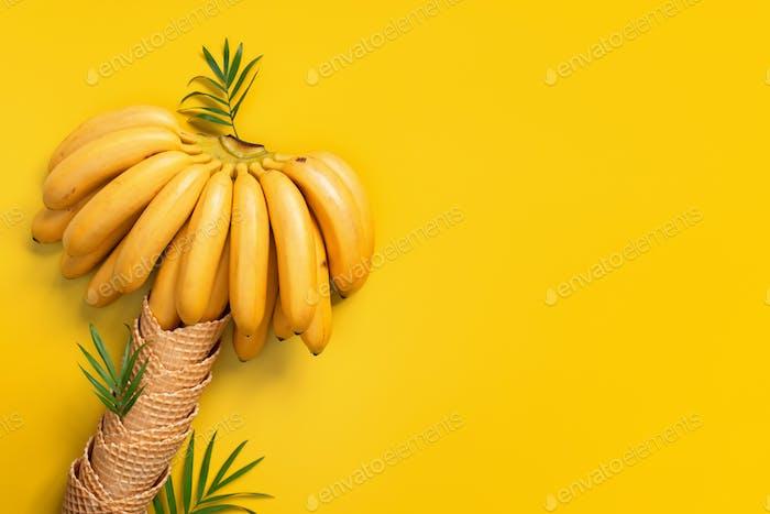 Banana Palm Tree of Waffle Cones