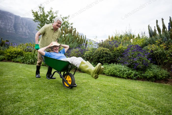 Senior man carrying his partner in wheelbarrow
