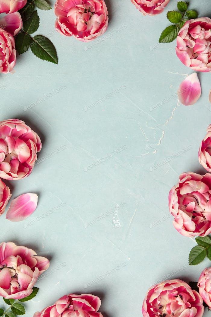 Rand der schönen rosa Tulpen auf blauem Shabby Chic Hintergrund