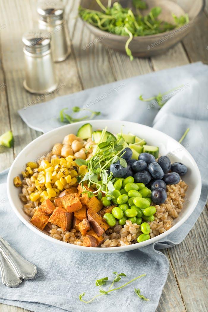 Raw Organic Healthy Buddha Bowl