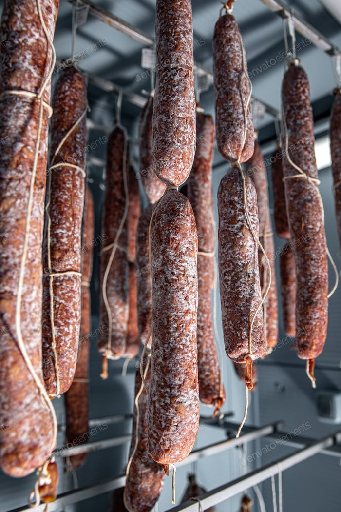 Tasty salami with white mold