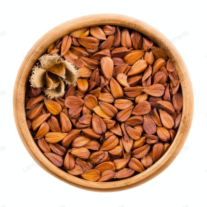 Shelled beechnuts in a wooden bowl on white background
