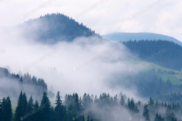 Fog in mountain