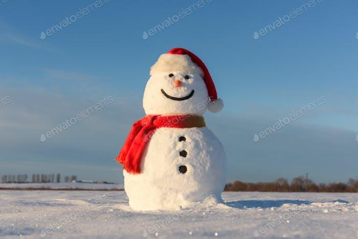 Lustiger Schneemann in Santa Hut