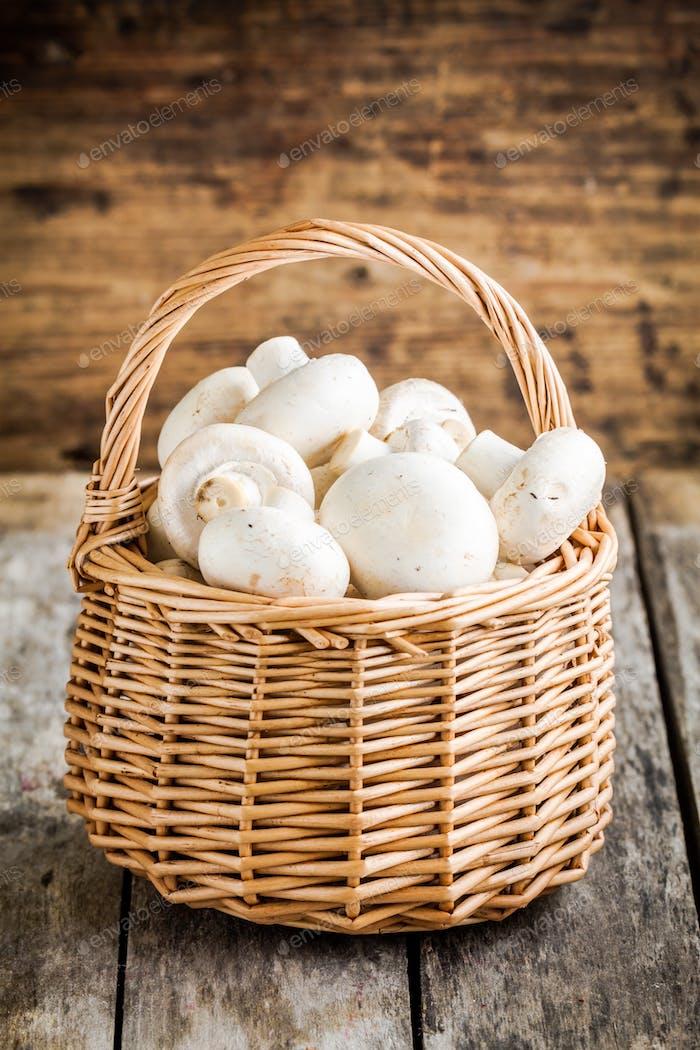raw fresh champignons in  the basket