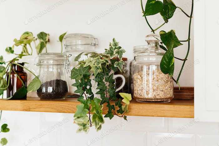 Open shelves with jars oatmeal in the kitchen.