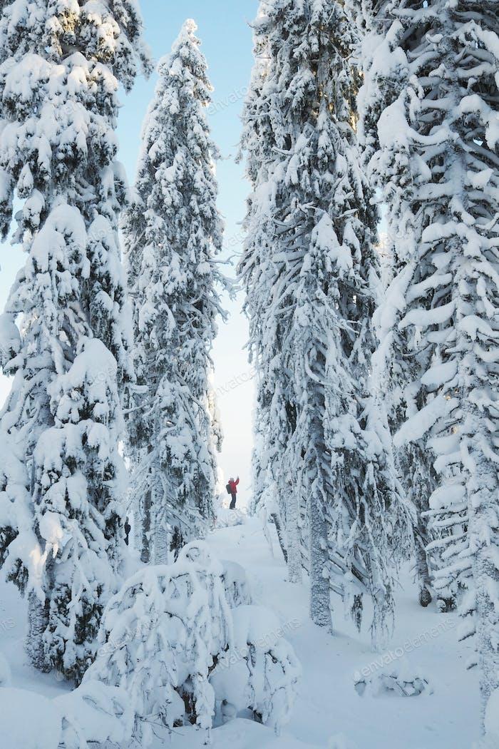 White winter tunnel