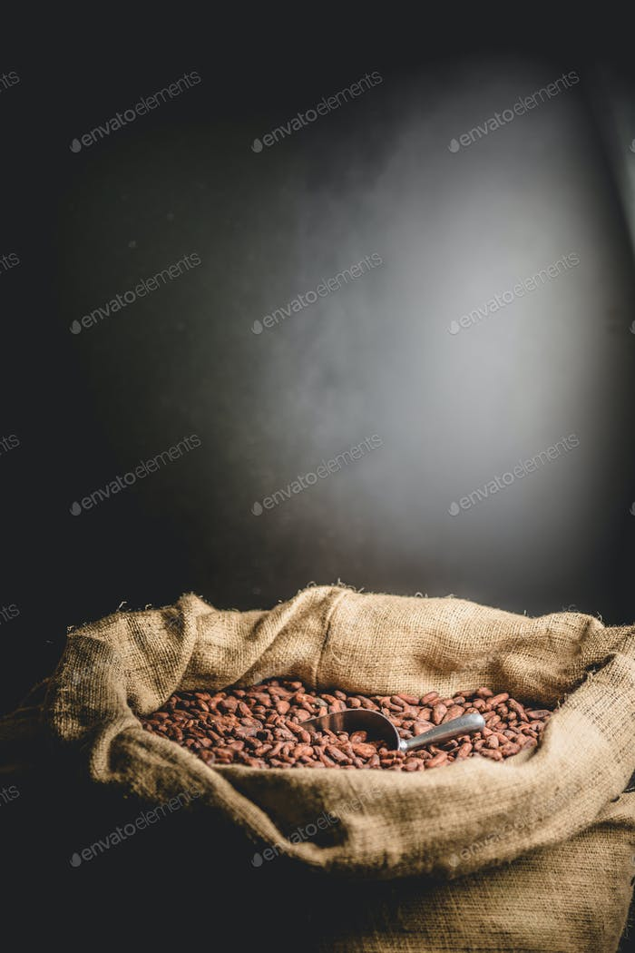 Sack full of aromatic cacao beans