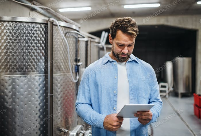 Man worker with tablet indoors, wine making concept