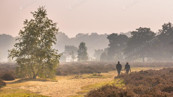 Couple walking along path through heathland