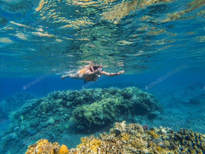 Woman snorkeling underwater above coral reef