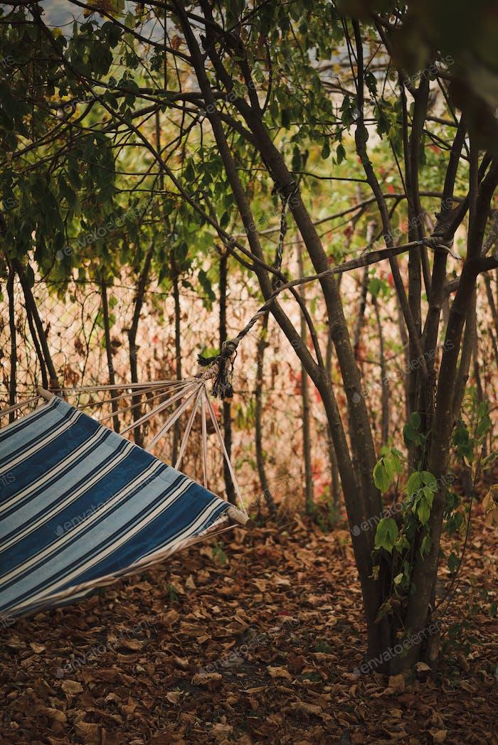 Gestreifte Hängematte hängt an einem Baum. Die Atmosphäre des Herbstes.