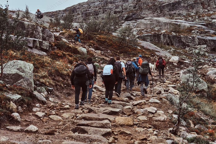 Group of hikers with backpacks, tracking in the mountains.
