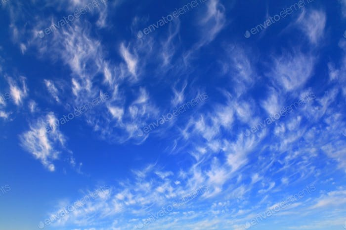 Cirrus clouds in the blue sky on a summer morning